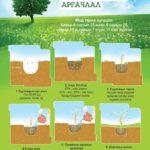 мод тарих хялбаршуулсан арга